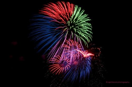 fireworks1 web