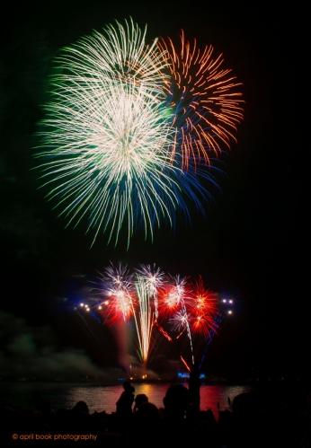 fireworks6 web