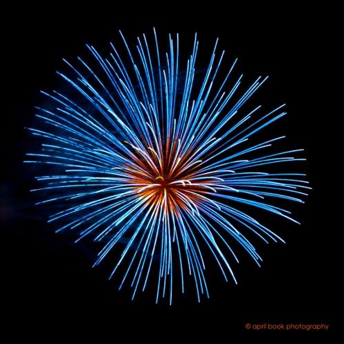 fireworks7 web