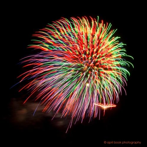 fireworks9 web
