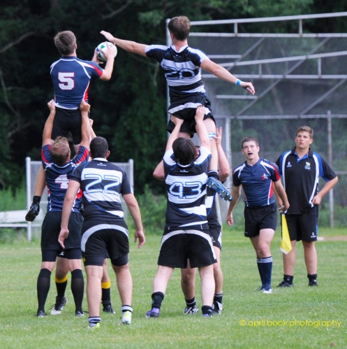 rugby 11 web