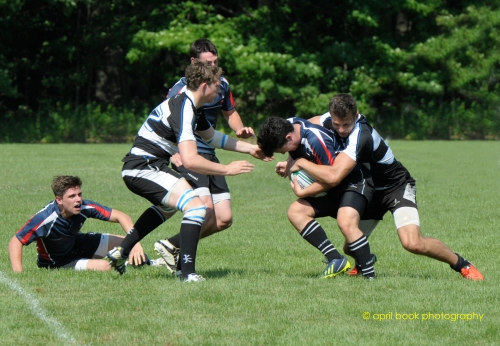 rugby 7 web