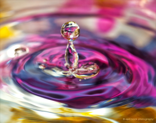 water_0201 web