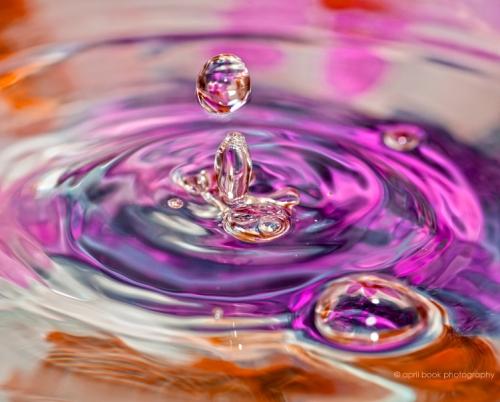water_0319 web