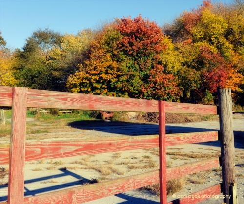 Fence3 web