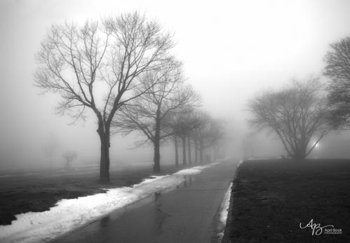 Fog1 web