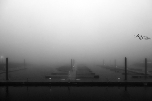 Fog4 web