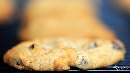 cookies04 web