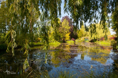 Giverny water03