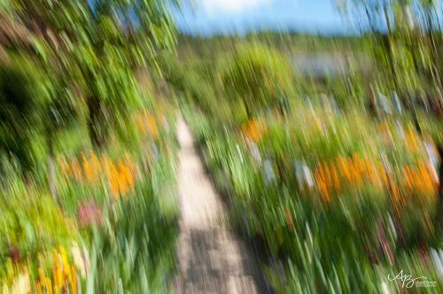 Monet gardens4 web