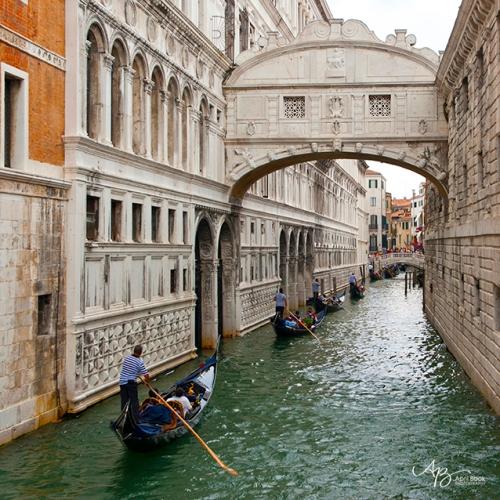 Venice web1