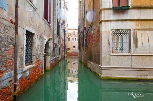 Venice web3