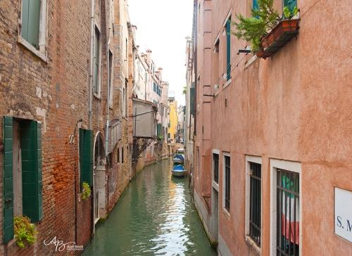 Venice web4