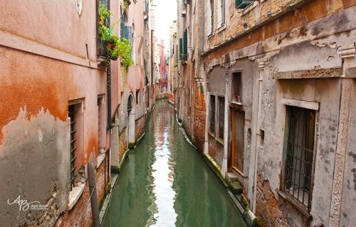 Venice web5